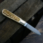 Preview: Great otter knife with deer horn scales