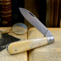Preview: Otter pocket knife 164K with bones