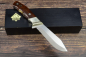 Preview: Rarity - Puma Amicus 122006 from 2007 with a snakewood handle incl. Certificate and wooden box